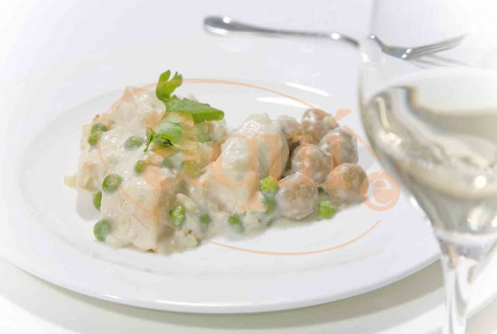Blanqueta de ave con arroz