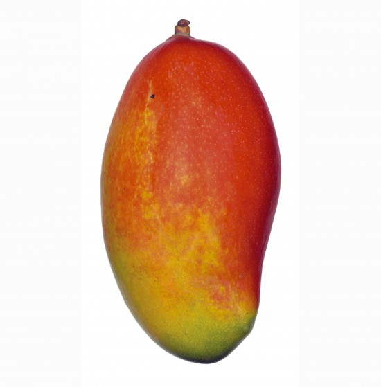 Froita fresca (mango)