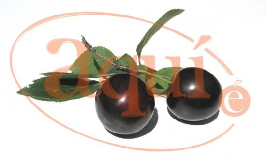 Fruta fresca (ciruelas)